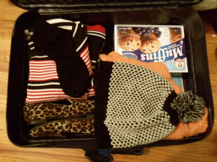 The contents of my suitcase.